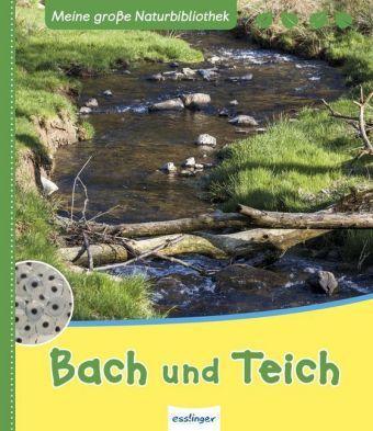 Bach und Teich, Stefanie Zysk
