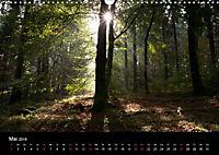 Bad Laer, Kurort am Teutoburger Wald (Wandkalender 2018 DIN A3 quer) - Produktdetailbild 5