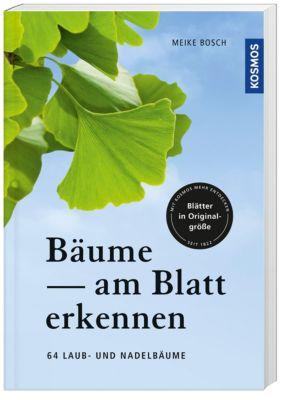 Bäume am Blatt erkennen, Meike Bosch