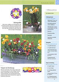 Balkon & Kübelpflanzen - Produktdetailbild 6