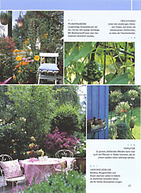 Balkon & Kübelpflanzen - Produktdetailbild 3
