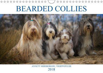 BEARDED COLLIES 2018 (Wandkalender 2018 DIN A4 quer) Dieser erfolgreiche Kalender wurde dieses Jahr mit gleichen Bildern, Annett Mirsberger