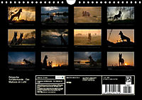 Belgische Schäferhunde - Der Malinois im Licht (Wandkalender 2018 DIN A4 quer) - Produktdetailbild 13