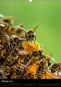 Bienenkalender (Wandkalender 2018 DIN A3 hoch) - Produktdetailbild 2