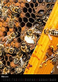 Bienenkalender (Wandkalender 2018 DIN A3 hoch) - Produktdetailbild 5
