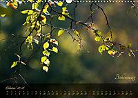 Blätter im Laufe des Jahres (Wandkalender 2018 DIN A3 quer) - Produktdetailbild 10