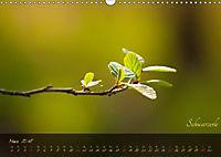 Blätter im Laufe des Jahres (Wandkalender 2018 DIN A3 quer) - Produktdetailbild 3