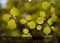 Blätter im Laufe des Jahres (Wandkalender 2018 DIN A3 quer) - Produktdetailbild 2
