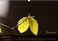 Blätter im Laufe des Jahres (Wandkalender 2018 DIN A3 quer) - Produktdetailbild 1
