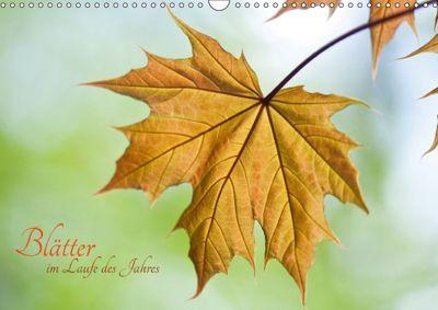 Blätter im Laufe des Jahres (Wandkalender 2018 DIN A3 quer), Helma Spona