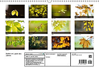 Blätter im Laufe des Jahres (Wandkalender 2018 DIN A3 quer) - Produktdetailbild 13