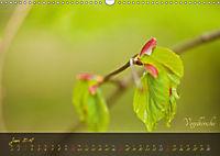 Blätter im Laufe des Jahres (Wandkalender 2018 DIN A3 quer) - Produktdetailbild 6