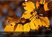 Blätter im Laufe des Jahres (Wandkalender 2018 DIN A3 quer) - Produktdetailbild 11
