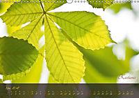 Blätter im Laufe des Jahres (Wandkalender 2018 DIN A3 quer) - Produktdetailbild 5