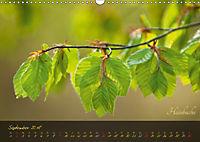 Blätter im Laufe des Jahres (Wandkalender 2018 DIN A3 quer) - Produktdetailbild 9