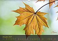 Blätter im Laufe des Jahres (Wandkalender 2018 DIN A3 quer) - Produktdetailbild 12