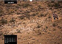 Blickpunkte des Südlichen Afrika (Wandkalender 2018 DIN A3 quer) - Produktdetailbild 7