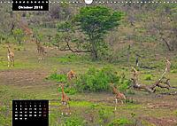 Blickpunkte des Südlichen Afrika (Wandkalender 2018 DIN A3 quer) - Produktdetailbild 10