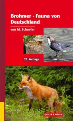 Brohmer Fauna von Deutschland, Matthias Schaefer
