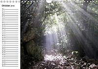 Camino di Assisi - FranziskuswegAT-Version (Wandkalender 2018 DIN A4 quer) - Produktdetailbild 10