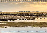 Chobe River - Eine spannende Flussfahrt in Botswana (Tischkalender 2018 DIN A5 quer) - Produktdetailbild 6