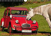 Citroën 2CV - Ente rot (Wandkalender 2018 DIN A4 quer) - Produktdetailbild 11