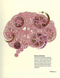 Das Gehirn in 30 Sekunden - Produktdetailbild 3