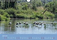 Das Jahr an der Naab zwischen Burglengenfeld und Kallmünz (Wandkalender 2018 DIN A4 quer) - Produktdetailbild 6