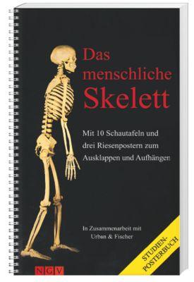 Das menschliche Skelett, Studien-Posterbuch, Peter H Abrahams, R. T. Hutchings, B. M. Logan, R. M. H. McMinn