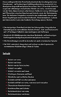 Das menschliche Skelett, Studien-Posterbuch - Produktdetailbild 2