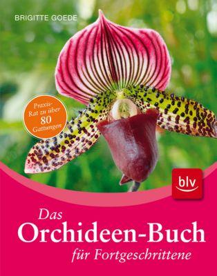Das Orchideen-Buch für Fortgeschrittene, Brigitte Goede