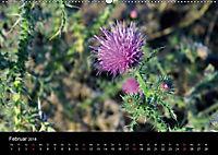 Der Ettersberg - Pilze und Wildpflanzen (Wandkalender 2018 DIN A2 quer) - Produktdetailbild 2