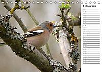 Der frühe Vogel ... erinnert Dich (Tischkalender 2018 DIN A5 quer) - Produktdetailbild 2