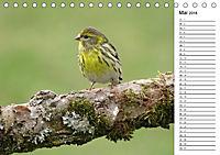 Der frühe Vogel ... erinnert Dich (Tischkalender 2018 DIN A5 quer) - Produktdetailbild 5