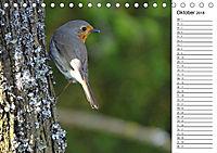 Der frühe Vogel ... erinnert Dich (Tischkalender 2018 DIN A5 quer) - Produktdetailbild 10