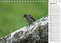 Der frühe Vogel ... erinnert Dich (Tischkalender 2018 DIN A5 quer) - Produktdetailbild 8