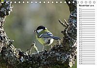 Der frühe Vogel ... erinnert Dich (Tischkalender 2018 DIN A5 quer) - Produktdetailbild 11