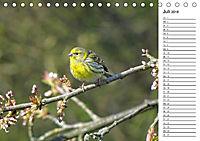 Der frühe Vogel ... erinnert Dich (Tischkalender 2018 DIN A5 quer) - Produktdetailbild 7