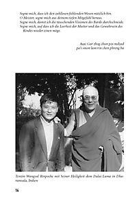 Die heilende Kraft des Buddhismus - Produktdetailbild 9
