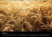 Die Reise zum Licht (Wandkalender 2018 DIN A3 quer) Dieser erfolgreiche Kalender wurde dieses Jahr mit gleichen Bildern - Produktdetailbild 6
