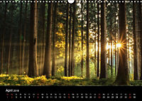 Die Reise zum Licht (Wandkalender 2018 DIN A3 quer) Dieser erfolgreiche Kalender wurde dieses Jahr mit gleichen Bildern - Produktdetailbild 4