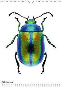 Die schönsten Käfer (Wandkalender 2018 DIN A4 hoch) - Produktdetailbild 10
