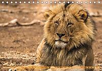 Die Welt der Löwen (Tischkalender 2018 DIN A5 quer) - Produktdetailbild 11