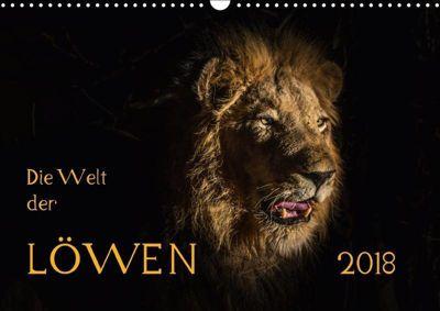 Die Welt der Löwen (Wandkalender 2018 DIN A3 quer), Barbara Bethke