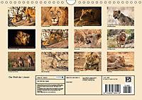 Die Welt der Löwen (Wandkalender 2018 DIN A4 quer) - Produktdetailbild 13