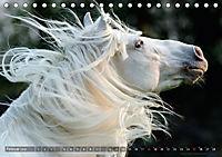 Edle spanische Pferde - Pura Raza Espanola (Tischkalender 2018 DIN A5 quer) - Produktdetailbild 2