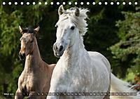 Edle spanische Pferde - Pura Raza Espanola (Tischkalender 2018 DIN A5 quer) - Produktdetailbild 3