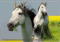 Edle spanische Pferde - Pura Raza Espanola (Tischkalender 2018 DIN A5 quer) - Produktdetailbild 6