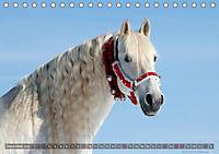 Edle spanische Pferde - Pura Raza Espanola (Tischkalender 2018 DIN A5 quer) - Produktdetailbild 12