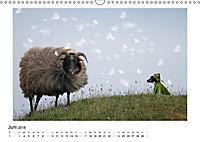 Ein Jack Russell Terrier auf der Suche nach der Traumfrau (Wandkalender 2018 DIN A3 quer) Dieser erfolgreiche Kalender w - Produktdetailbild 6
